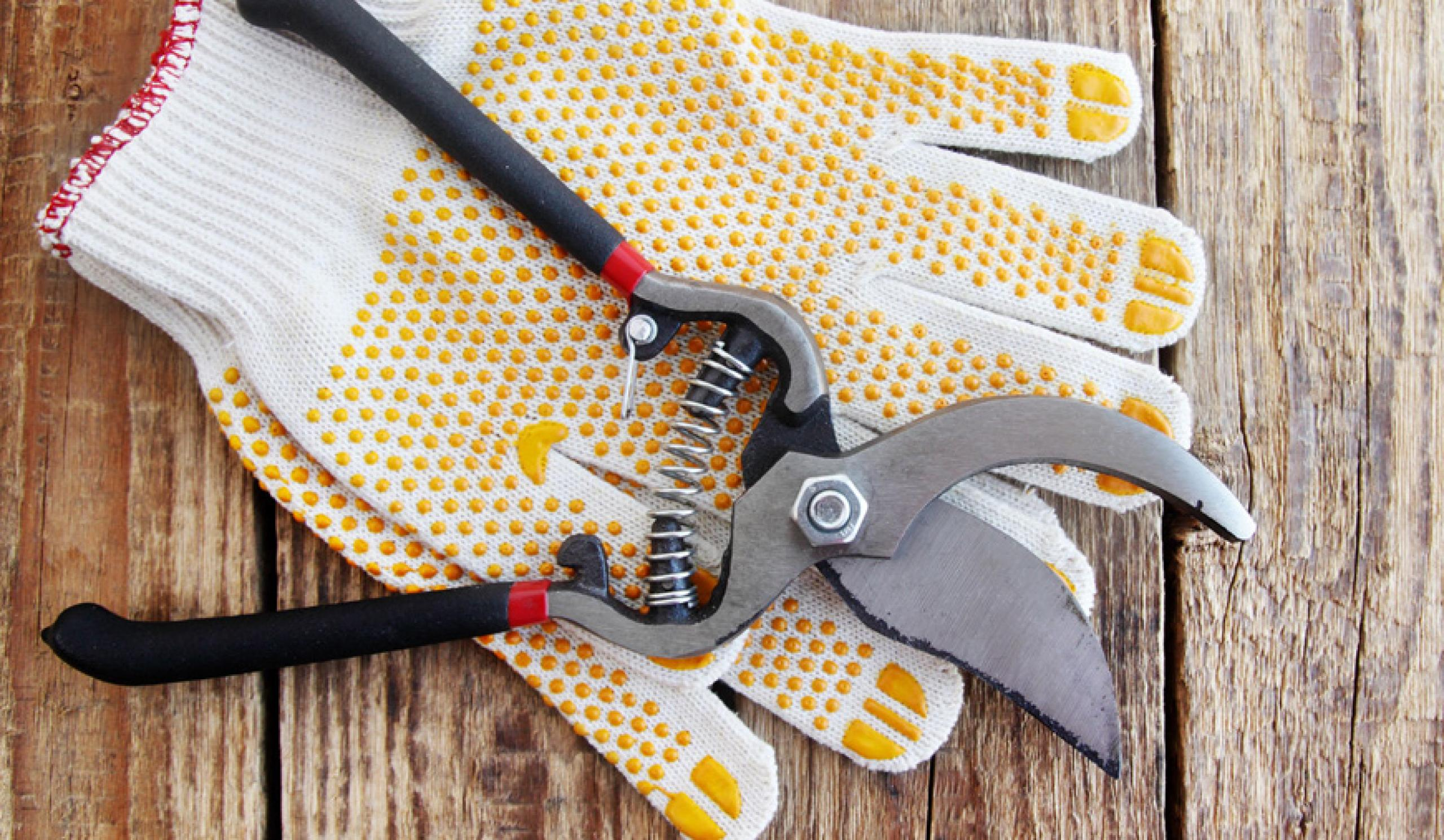 Συντήρηση κήπου και υπαίθριες εργασίες